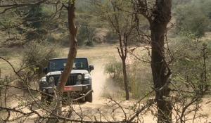Mahindra Thar Off-Road Test